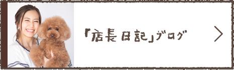 「店長日記」ブログ